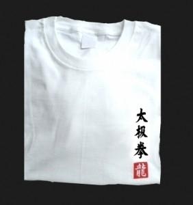 Budodrake T-Shirt weiß Taijichuan