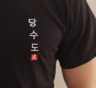 Budodrake T-Shirt schwarz Tang Soo Do