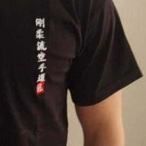 Budodrake T-Shirt schwarz Goju-Ryu Karate-Do