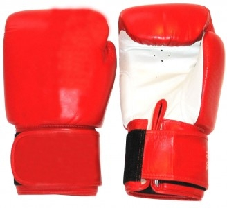 Boxhandschuhe Profi Echtleder rot-weiß