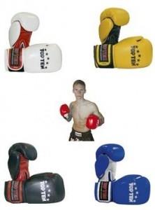 Boxhandschuhe TOP TEN Thaiboxing