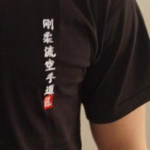 Budodrake T-Shirt schwarz Shito-Ryu Karate-Do